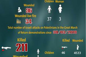Total Number of Casualties on Gaza Demonstrations, 13 September 2019